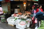 Fish at the morning market