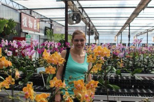 Happy with Orchids
